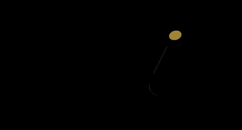 peliz-logo-2